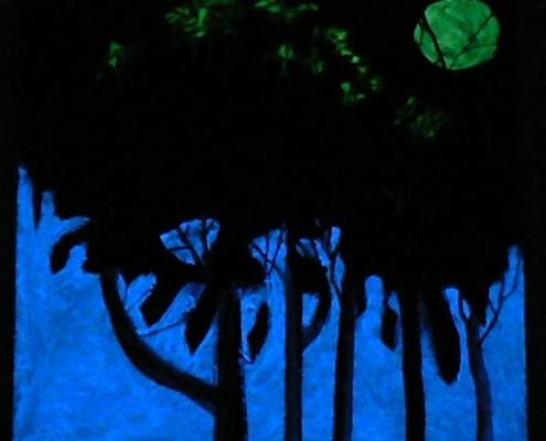 Wald Nacht